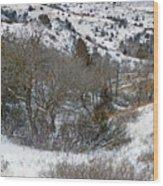 January Badlands Wood Print