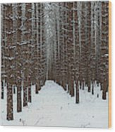 January Forest Wood Print