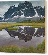 Jasper National Park, Alberta, Canada Wood Print