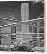 Jay Pritzker Pavilion Infrared Wood Print