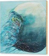 Jellyfish 4 Wood Print