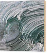 Jibbon Wave Wood Print