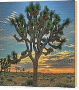 Joshua Tree At Sunrise Wood Print