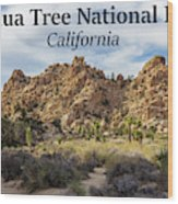 Joshua Tree National Park Box Canyon, California Wood Print