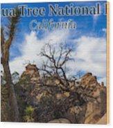Joshua Tree National Park, California Box Canyon 02 Wood Print