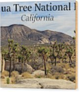 Joshua Tree National Park Valley, California Wood Print
