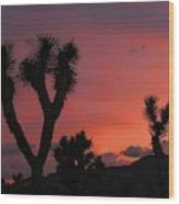Joshua Trees Silhouetted Against A Red Sky Wood Print