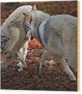 Joyful Wolves Wood Print