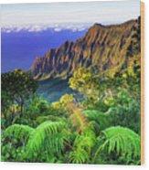 Kalalau Valley And The Na Pali Coast Wood Print
