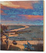 Kalaloch Creek 54 Wood Print