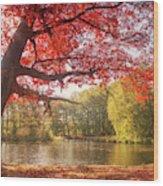 Kasteel Groeneveld Wood Print