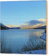 Kenai Lake Primrose Kenai Peninsula Alaska Wood Print