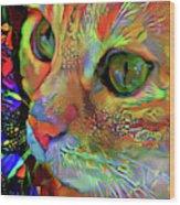 Koko The Orange Cat Wood Print