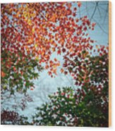 Kuhonbutsu In Autumn Wood Print