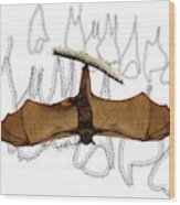 L Is For Little Red Flying Fox Wood Print