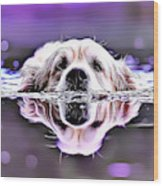 Labrador Swimming Wood Print