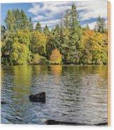 Lacamas Lake Nature Panorama Camas Washington, Usa Wood Print