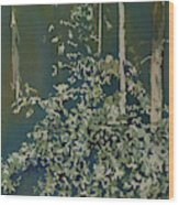 Lacy Edge Wood Print