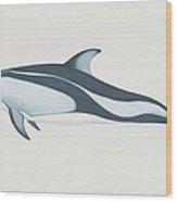 Lagenorhynchus Obliquidens, Pacific Wood Print