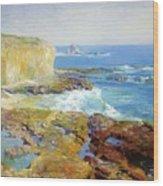 Laguna Rocks Low Tide 1916 Wood Print