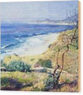 Laguna Shores 1916 Wood Print