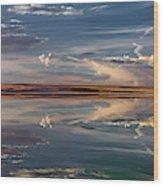 Lake Abert 4 Wood Print