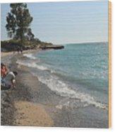 Lake Michigan Frankfort Mi Wood Print