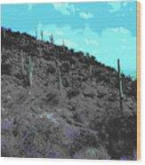Lake Pleasant Az 042a Wood Print