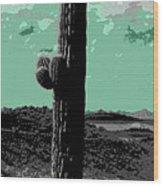Lake Pleasant Az 044a Wood Print