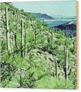 Lake Pleasant Az 045a Wood Print