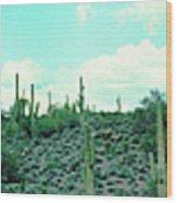 Lake Pleasant Az 047a Wood Print