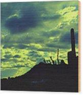 Lake Pleasant Az 052a Wood Print
