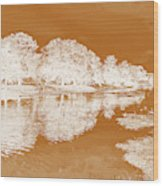Lake Reflections In Brown Wood Print