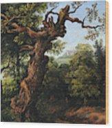 Landscape After A. Van Everdingen Wood Print