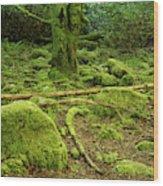Landscape At Torc Waterfalls Wood Print