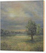 Landscape Of A Meadow With Sun And Trees Wood Print