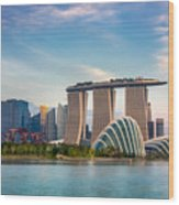 Landscape Of The Singapore Financial Wood Print