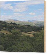 Landscape View From Little Langdale Wood Print