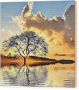 Landscapes 33 Wood Print