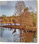 Langan Park Island Reflections Wood Print