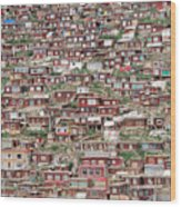 Larung Gar Five Sciences Buddhist Wood Print