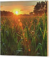 Late Summer Sunset Over The Harvest Wood Print