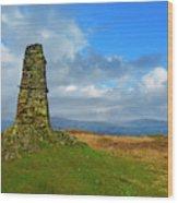 Latterbarrow In Lake District National Park Cumbria Wood Print