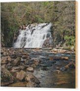 Laurel Falls In Spring I Wood Print