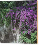 Lavender Pot Wood Print