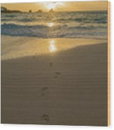 Leading To The Light Coastal Sunrise Wood Print