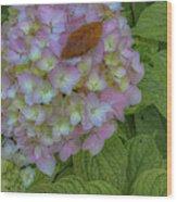 Leaf And Pink Wood Print