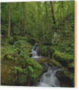 Lee Falls Cascades Wood Print