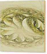 Let Sleeping Dragons Sleep Wood Print