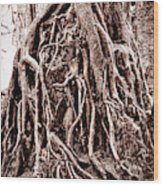 Life Is Complicated - Sepia Wood Print